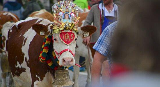 Almabtrieb (Ritorno a valle del bestiame)
