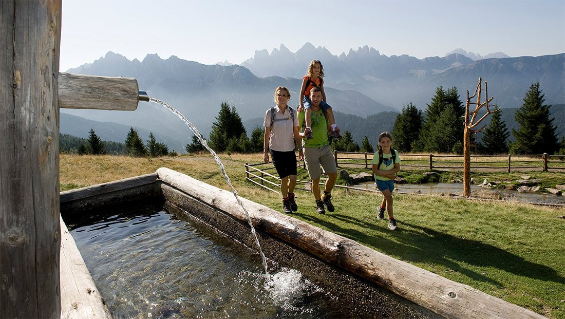 Family guesthouse Pfeiferhof – for carefree holidays with children in South Tyrol
