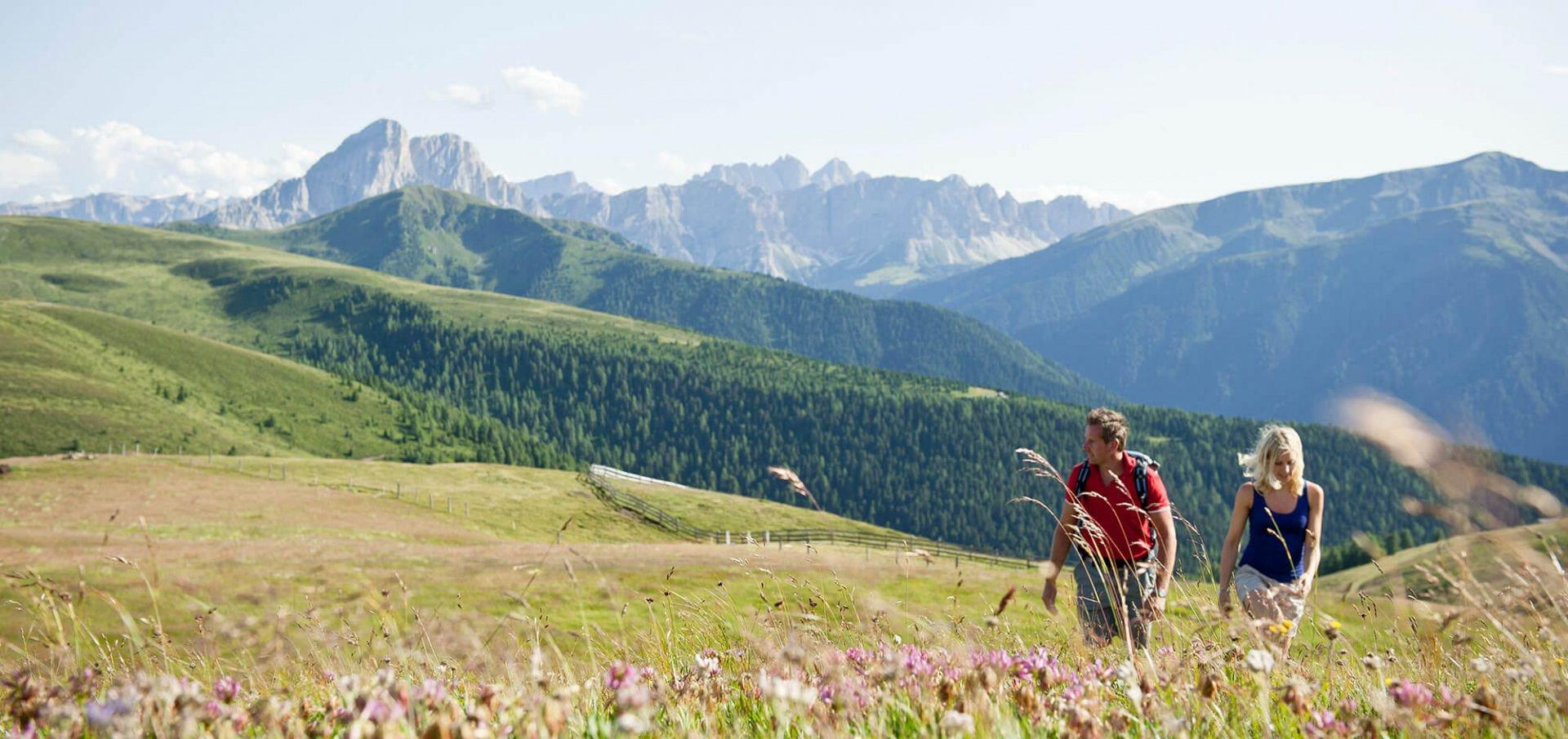 7 = 6 Frühsommer in den Bergen - Für Naturliebhaber und Genießer